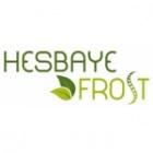 Hesbaye-Frost