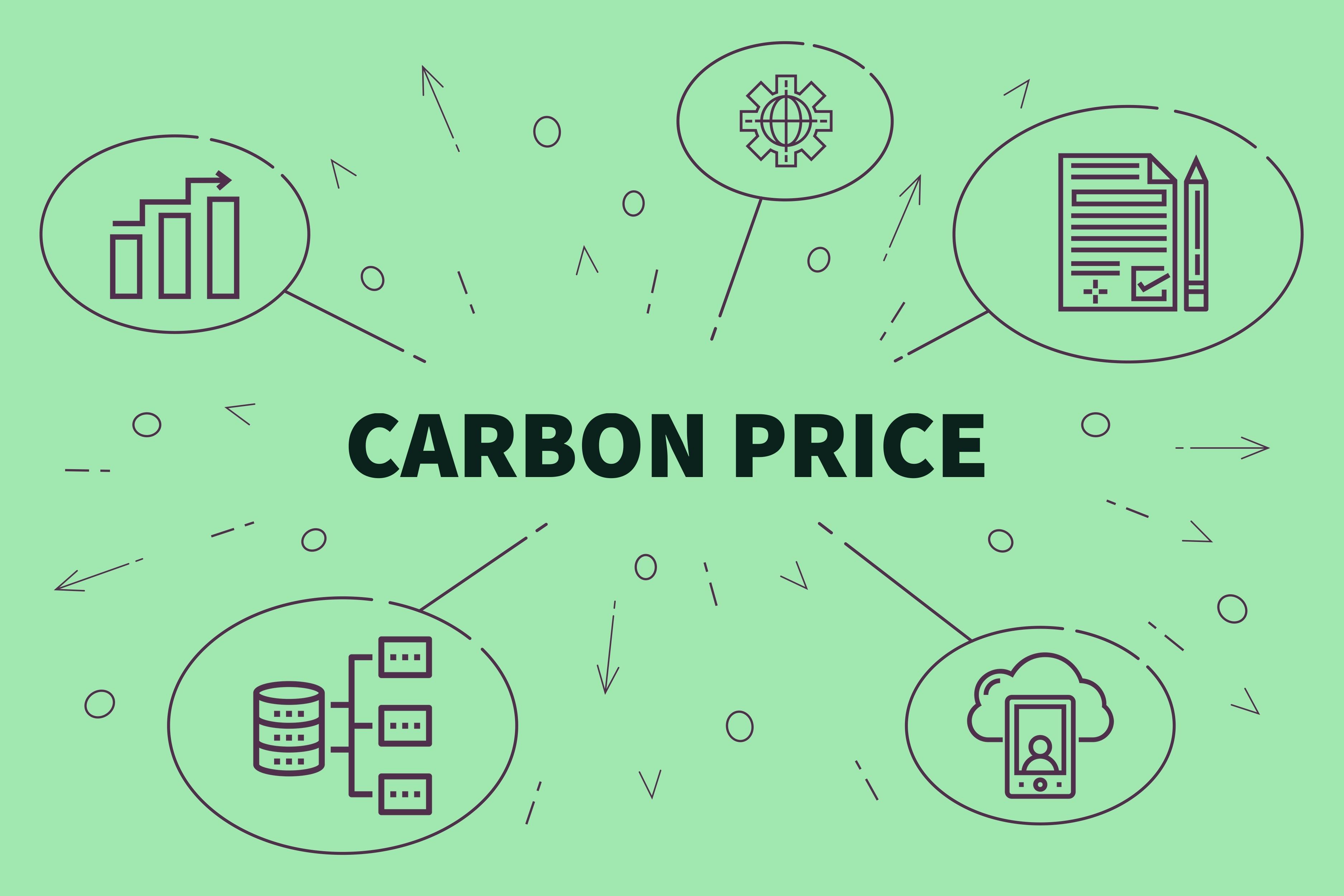 Valeur tutélaire du carbone